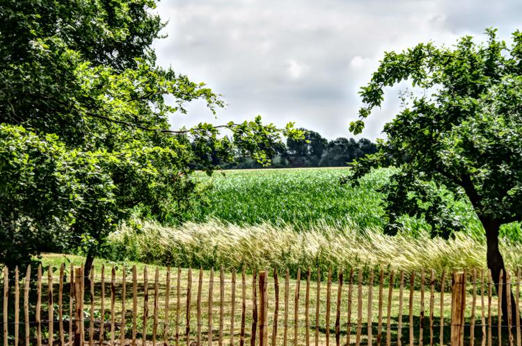 Jardinier brabant wallon for Jardinier belgique